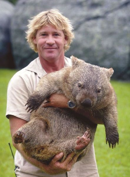 5-wombat-1-2-6-4-2-1-2-3-4-1